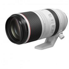 RF 100-500mm f/4.5-7.1L IS USM