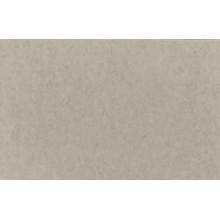Fondo de Papel Lastolite  2,75X 11mts. Artic Gray LA 9012